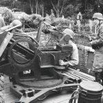 Volksgrenadiere Flak 38(3)